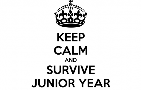 We Asked 30 Seniors: How Did You Survive Junior Year?