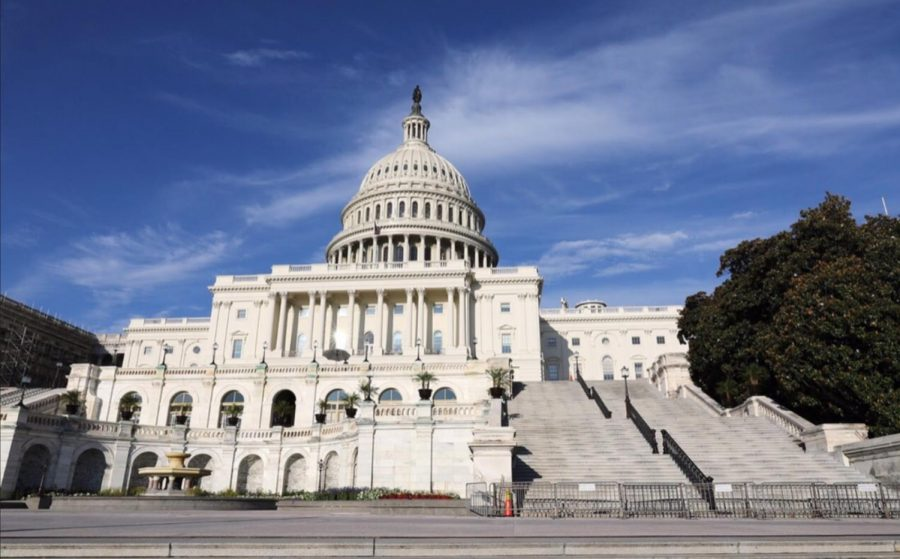 The Capitol of the United States - The latest victim of political extremism fueled by social media influence.